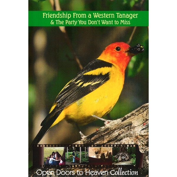 Friendship From a Western Tanager