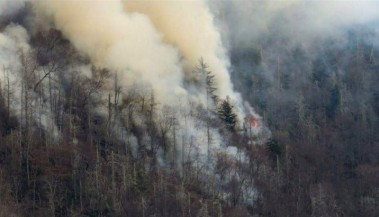 Dollywood Employee Finds Burned Bible Page after Wildfires