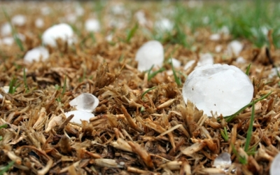 Record-breaking Hail in Colorado